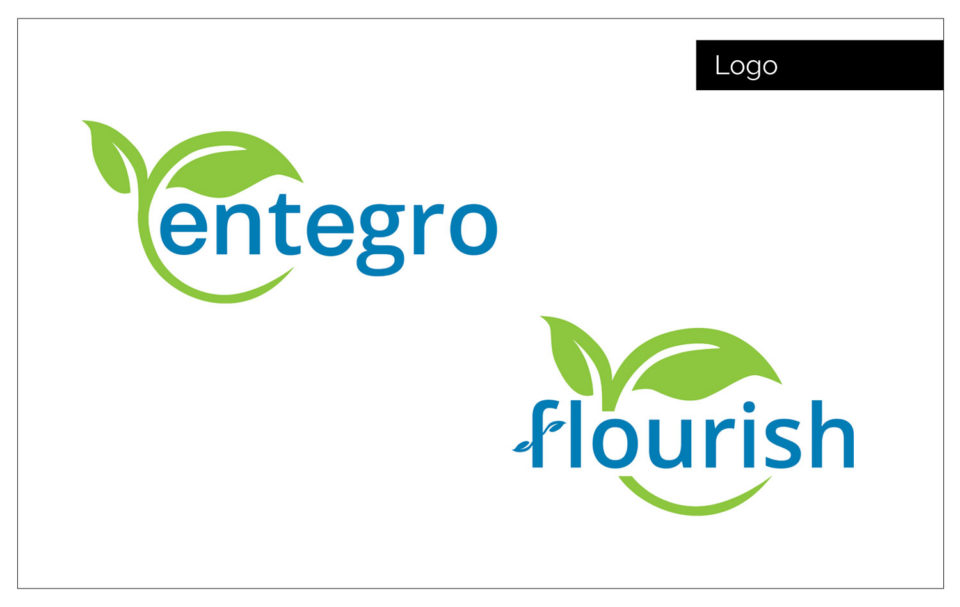 Entegro logo designed for their ecomm website by Agency Two Twelve